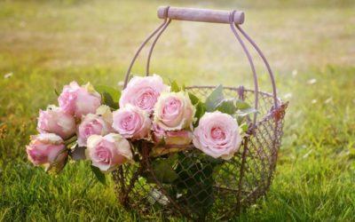Disrupsi Bisnis Bunga A Better Florist