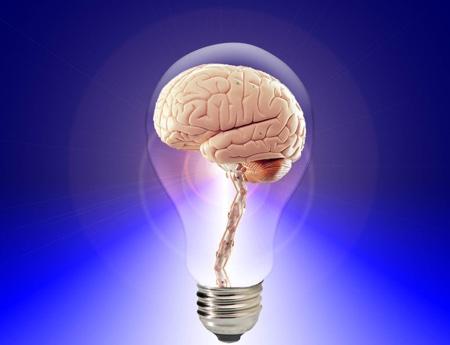 brain-450