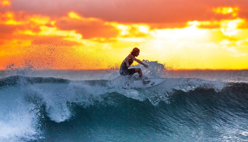 Surfing Ombaknya Ekonomi Ekosistem
